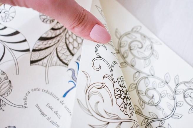 Libris--7 carte de colorat